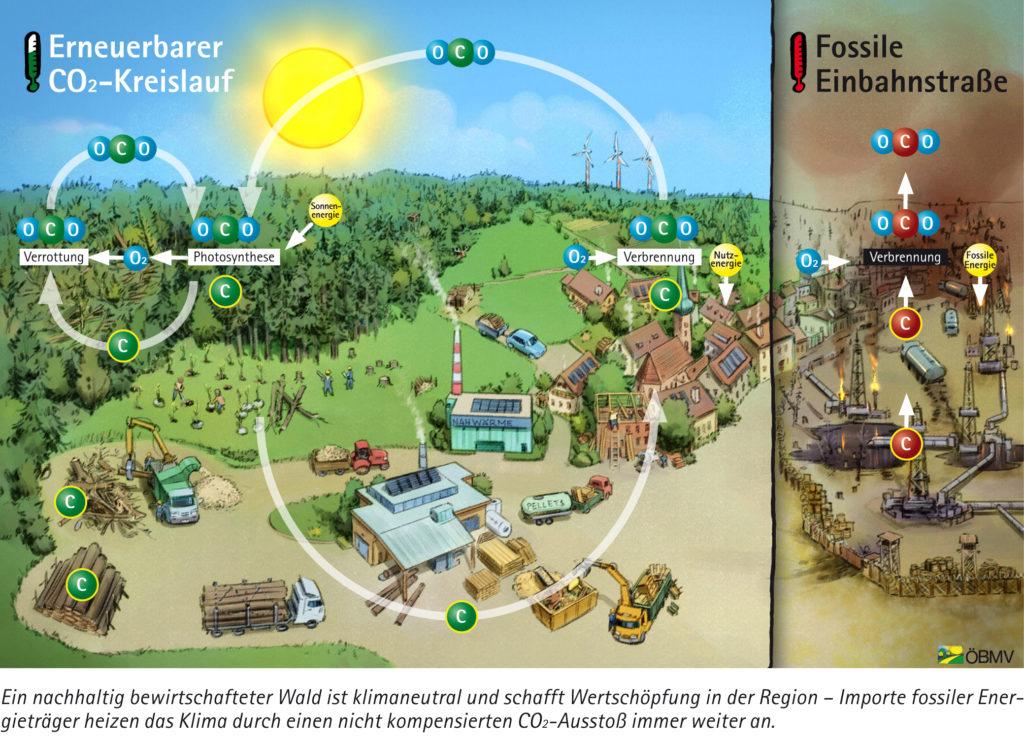 Diagramm Hasenauer CO2 Haushalt